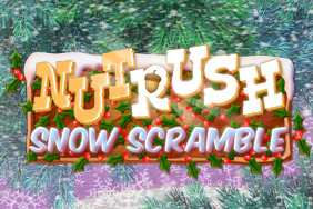 Play Nut Rush Snow Scramble!